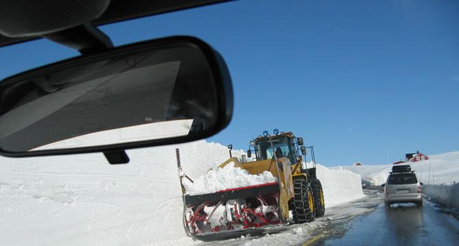 Safe driver avoiding accident